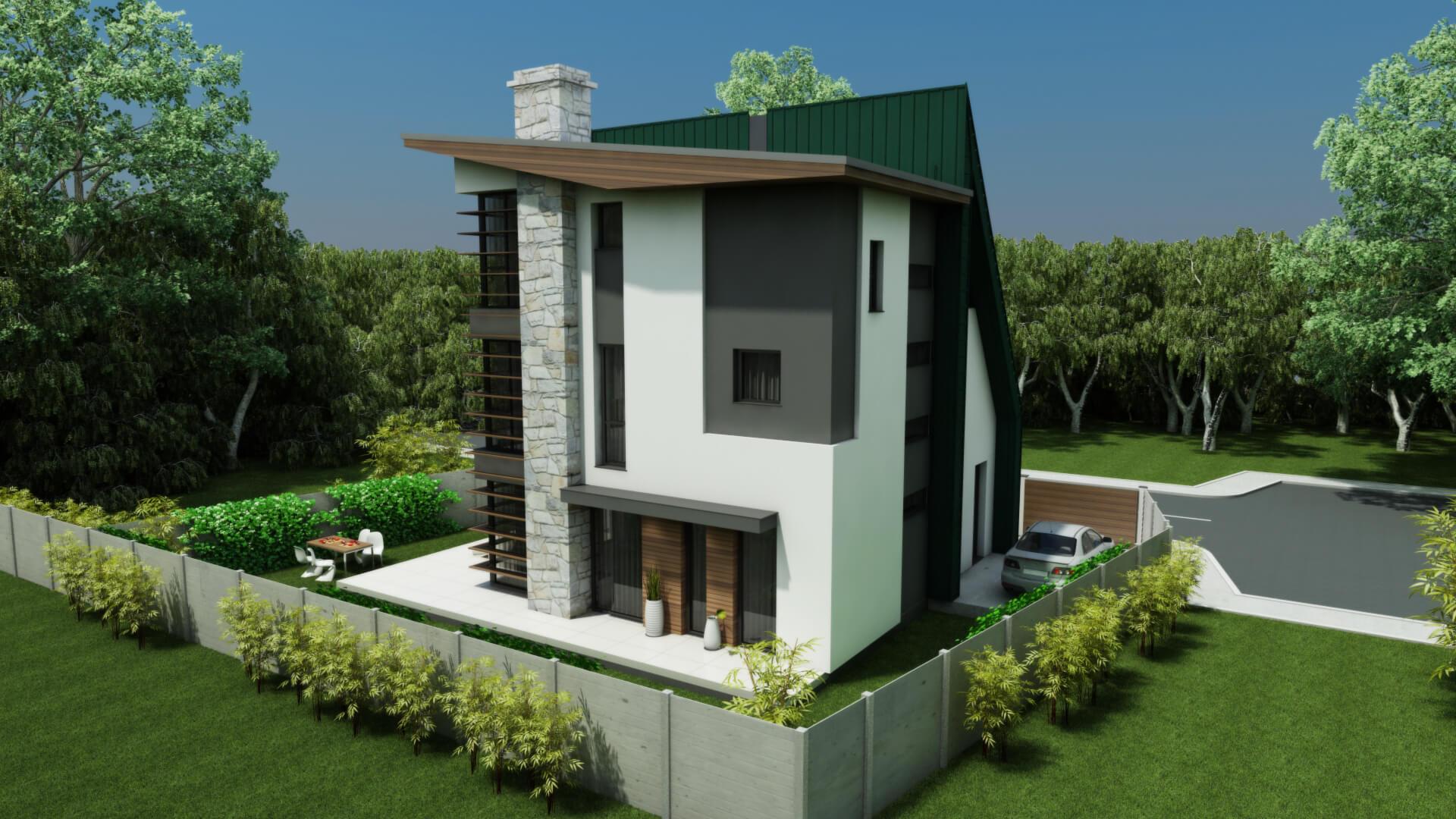 proiect case